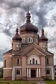 Church in the village Zapytov Lviv region — Foto de Stock