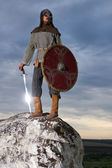 Knight on a rock with a sword — Stock Photo