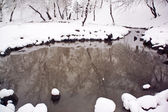 Snow covered riverbank — Stock Photo