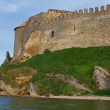 Citadel on Dniester estuary — Stock Photo #30788019
