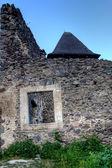 Ruines du château nevitsky transcarpatie ukraine — Photo