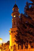 Католическая церковь в городе Ужгород — Стоковое фото