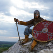 Knight on a rock — Stock Photo