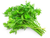 Green parsley — 图库照片