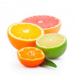 Half of fruits - Stock Photo