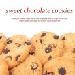 Chocolate chips cookies background — Stock Photo #31445157