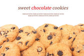 Chocolate chips cookies background — Stock Photo