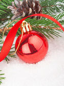 Christmas red ball on fir tree — Stock Photo