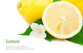 Lemon & text — Stock Photo