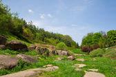 Landscaping, arboretum Sofievka — Stock Photo
