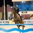 Unknown rider competes in horse jumping — Stock Photo #15405377