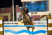 Unknown rider competes in horse jumping — Stock Photo