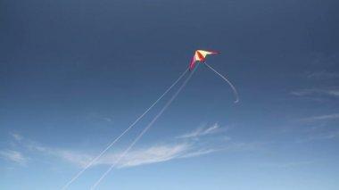 Kite soaring — Stock Video
