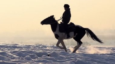 Horseman. A man on a horse galloping on a snowy field — Stock Video