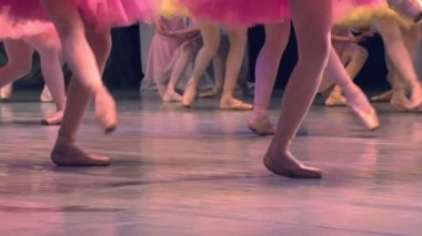 Feet in pointe dancing ballerinas on the stage — Stock Video