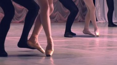Dancing couples show classical ballet pas — Stock Video