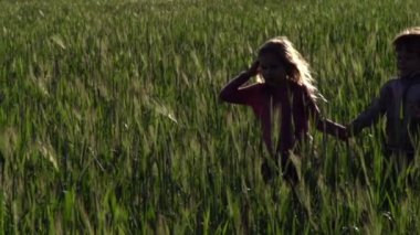 Girl and boy running through   field — Stock Video