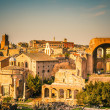 Ruins of Forum in Rome — Stock Photo #12503580