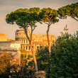 Colosseum at sunset — Stock Photo
