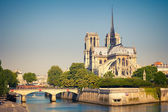 View on Notre Dame de Paris — Stock Photo