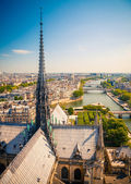 Paris from Notre Dame — Stock Photo