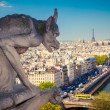 Chimera on Notre Dame Cathedral — Stok fotoğraf
