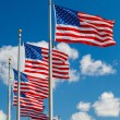 US Flags — Stock Photo #12808350