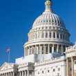 Dome of the US Capitol — Stock Photo #13124386