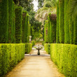 Stock Photo: Garden of the Poets in Alcazar, Sevilla