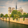 Notre Dame de Paris — Stock Photo #13609292