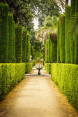 Tuin van de dichters in alcazar, sevilla — Stockfoto