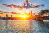 Cologne at sunset — Stock Photo