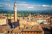 Aerial view over city of Siena — Stock Photo