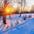 Sunset in winter park — Stock Photo #15862745