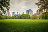 Central park at rainy day — Stock Photo