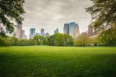Central park på regnig dag — Stockfoto