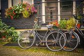 велосипеды в амстердаме — Стоковое фото