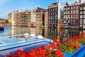 Edifícios holandeses tradicionais, amsterdam — Foto Stock