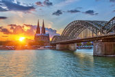 Cologne at sunset — Stockfoto