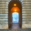 Gate in Buda Castle, Budapest — Stock Photo #19903787