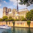 Notre Dame de Paris — Stock Photo #21262339