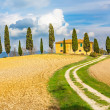 Stock Photo: Tuscany landscape