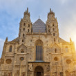 St. Stephan cathedral in Vienna — Stock Photo #29017695