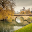 Cam river, Cambridge — Stock Photo #29808135