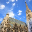 Foto de Stock  : St. Stephcathedral in Vienna