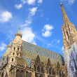 St. Stephcathedral in Vienna — Stock Photo #30852723
