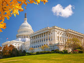 US Capitol at sunny day — Stock Photo
