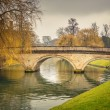 Cam river, Cambridge — Stock Photo #31522277