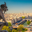 Gargoyle on Notre Dame Cathedral — Stock Photo #32370965