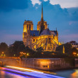 Notre Dame de Paris — Stock Photo #33883971